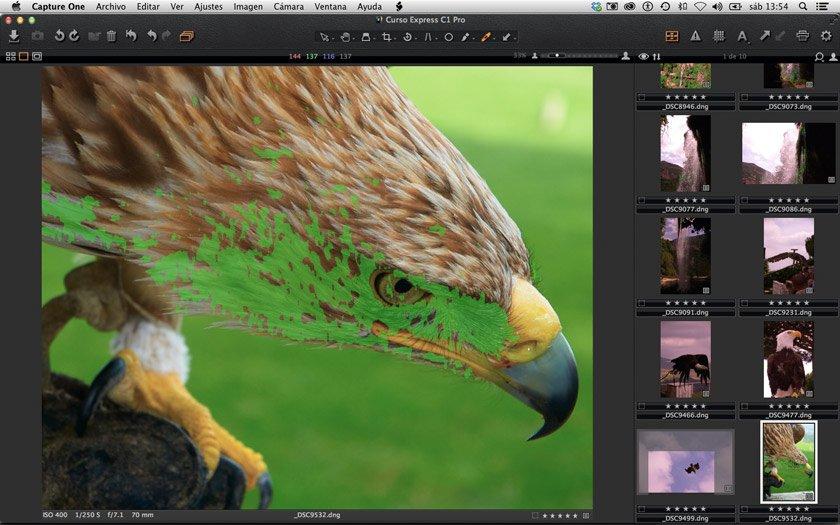 Visualización rápida de las fotos mejor enfocadas en Capture One