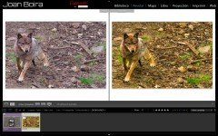 Ajuste luz y color en Lightroom (videoturorial)