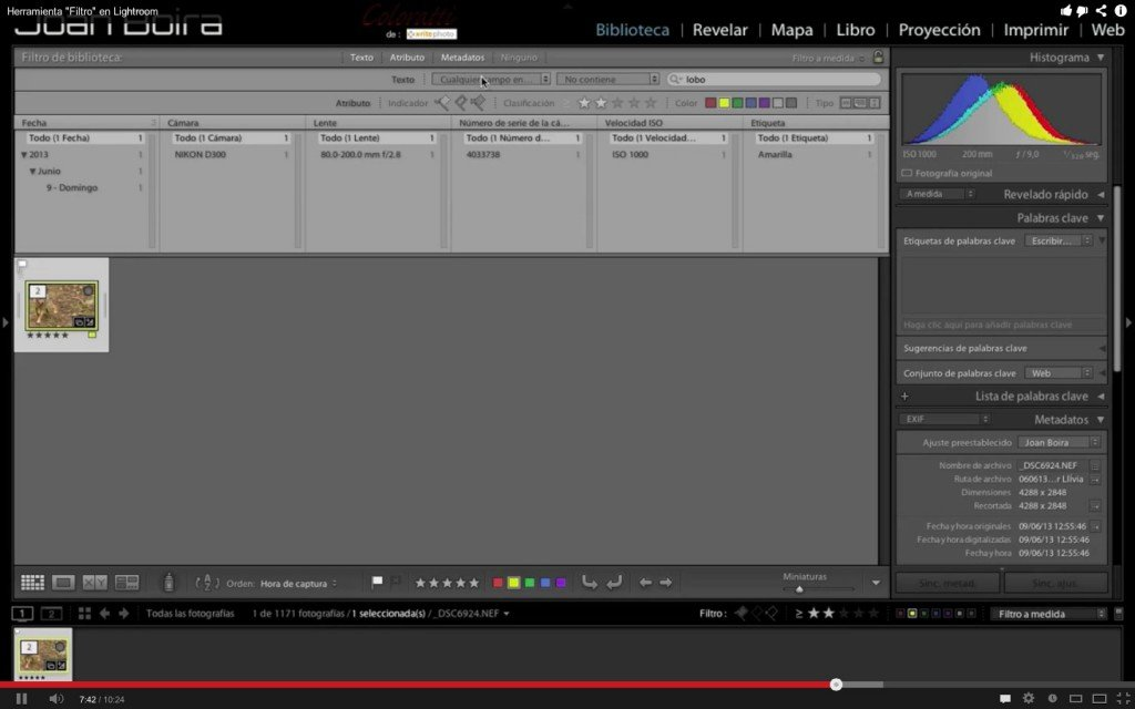 "Herramienta ""Filtro"" de biblioteca en Lightroom (Videotutorial)"