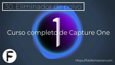Capture One. Eliminador de polvo